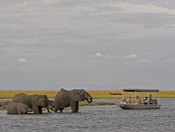 Iconic Victoria Falls & Chobe Experience