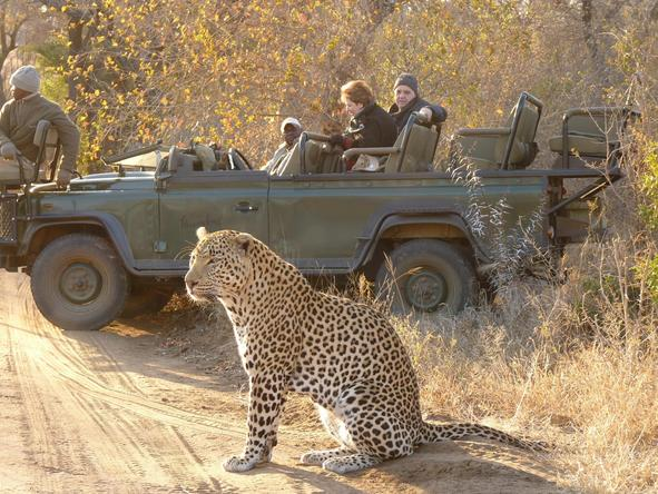 Cape Town, Winelands & Kruger Safari Journey
