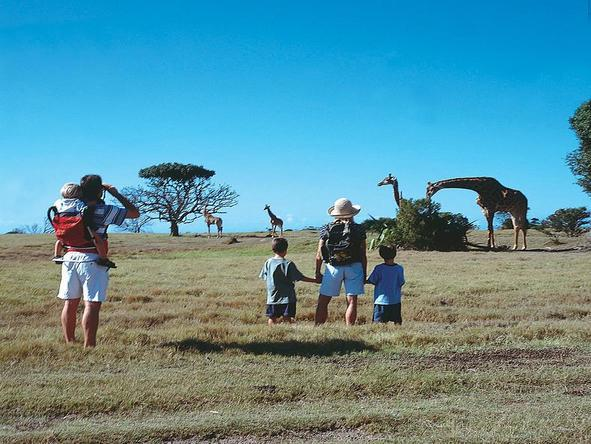 Magnificent Cape & Safari Family Holiday