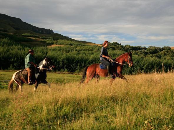 Scenic Drakensberg & Battlefields Experience