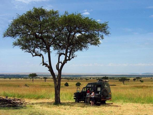 Tanzania Parks & Zanzibar Adventure