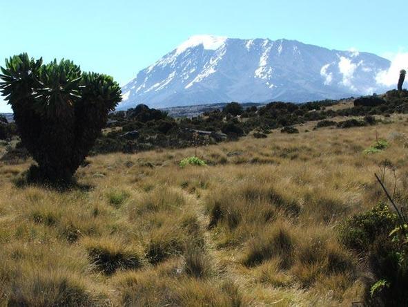Memorable Kilimanjaro Marangu Climb