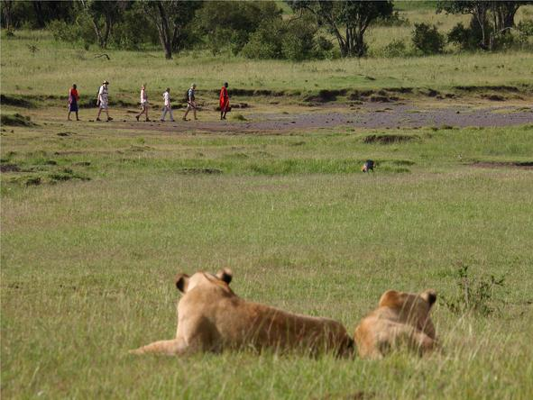Kenya Oasis & Wilderness Adventure