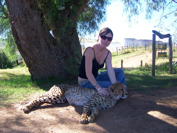 Catherine Silberstein - feeding a friendly cheetah at Spier in the Cape Winelands