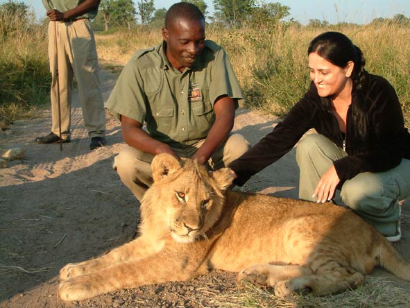 Sharlene Swart - petting a young lion at Victoria Falls