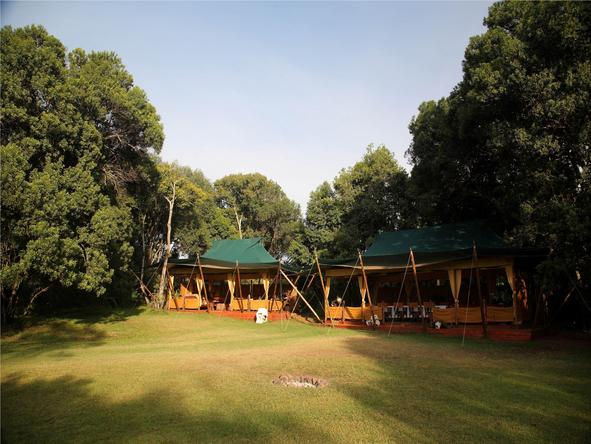 Elephant Pepper Camp- Camp