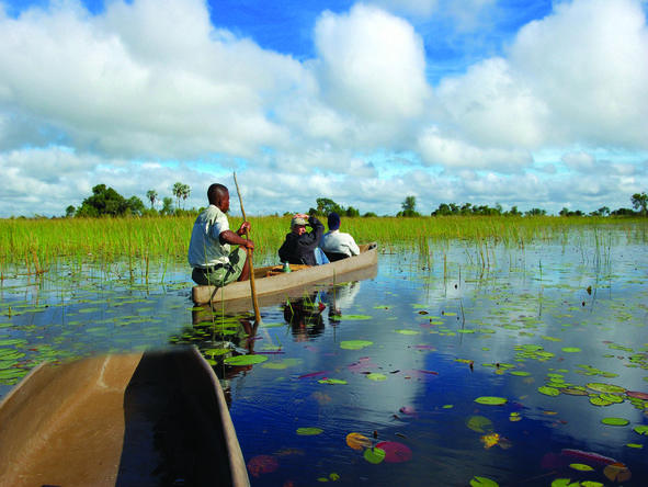 Set out and explore the waterways and islands of the Delta in a traditional mokoro canoe.