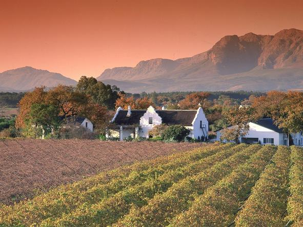 The Cape Winelands - just an easy 40 minute drive from Cape Town - are filled with award-winning wine estates.