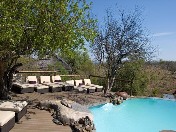 Royal Madikwe - Pool
