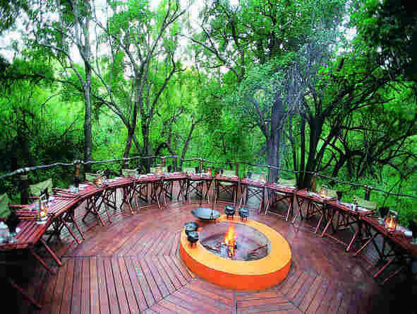 Jaci's Tree Lodge - Boma