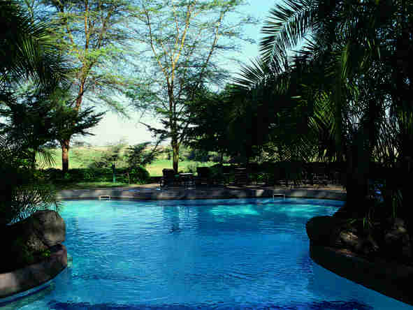 Amboseli Serena Safari Lodge - Pool