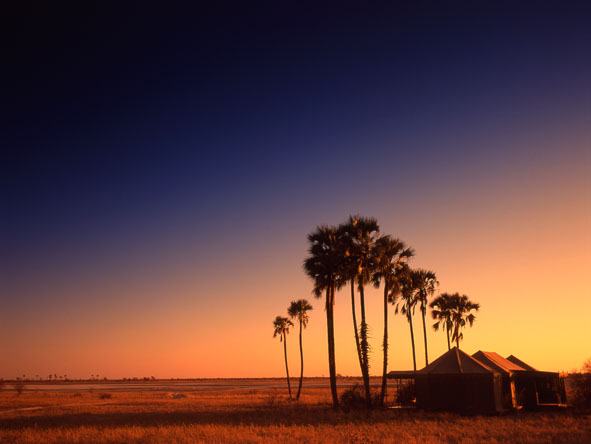 Botswana Jacks Camp