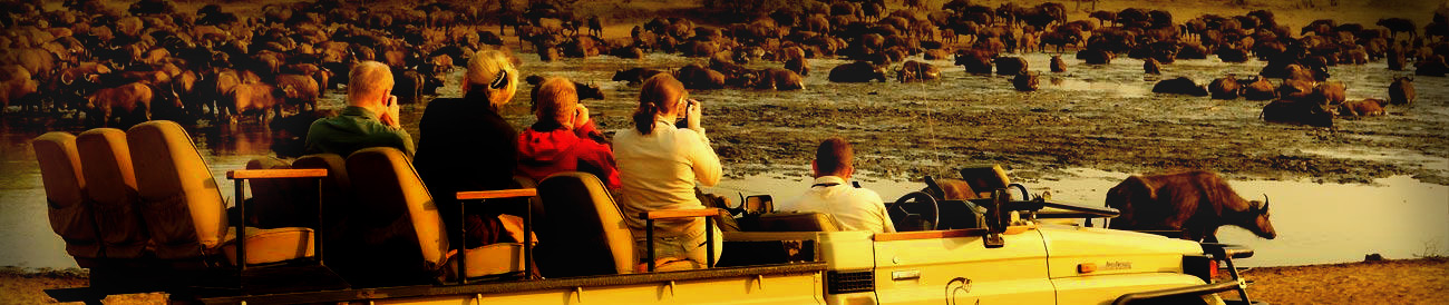 Best Family African Vacations