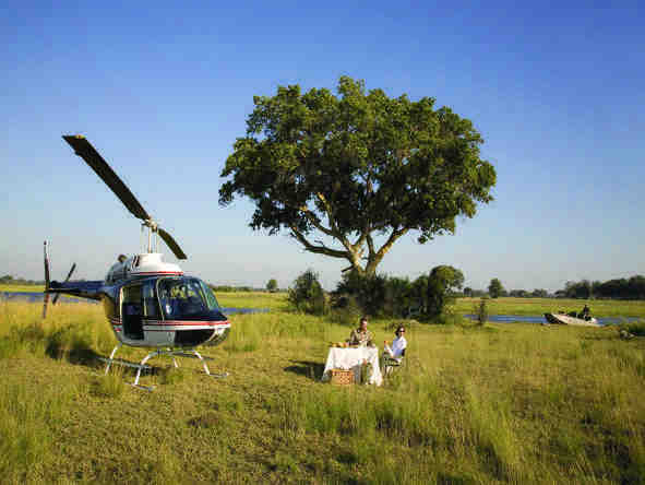 Eagle Island Camp - fly in safari