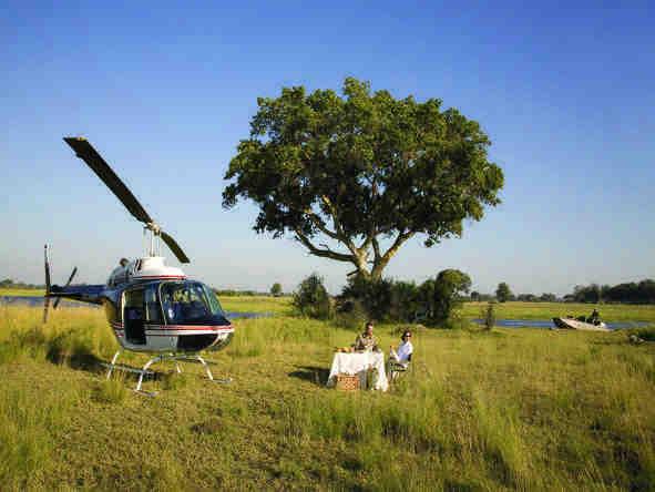Eagle Island Camp - fly in safari
