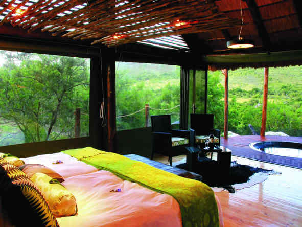 Bayethe Tented Lodge - Room2