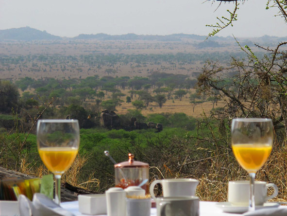 Serengeti Pioneer Camp - Breakfast at Tent