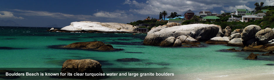 Boulders Beach - perfect for snorkelling