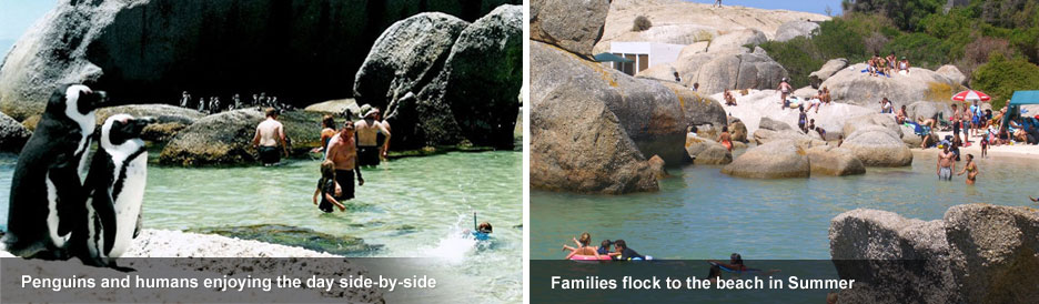Boulders Beach - ideal for families
