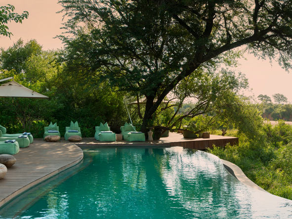 Ngala Tented Camp - Pool