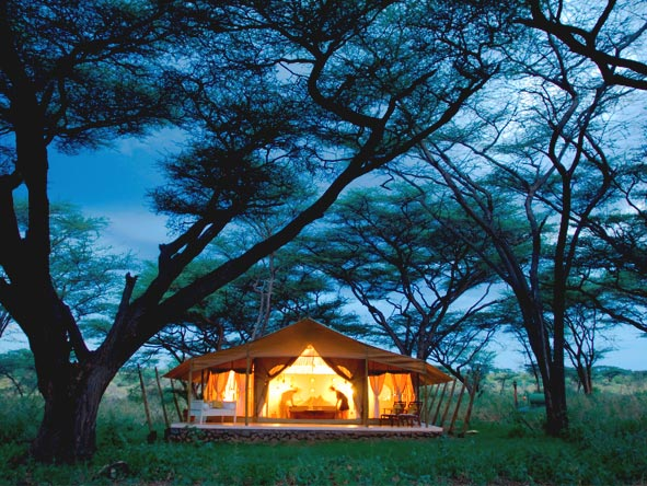 Luxury Safaris gallery3