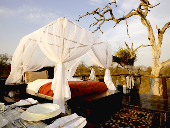 Luxury Safaris gallery8