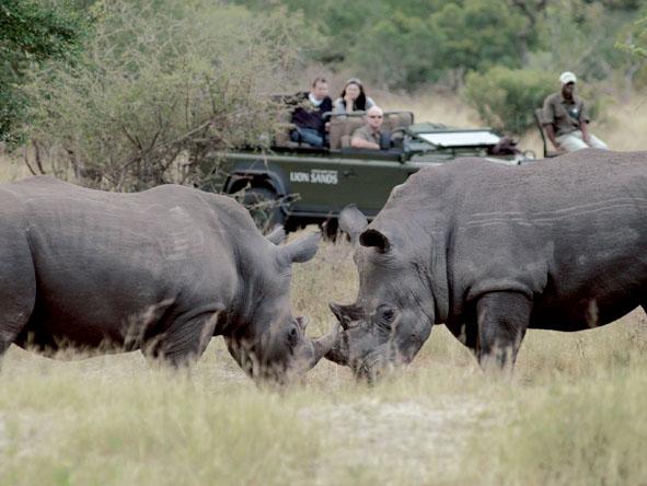 6333 Kruger 6