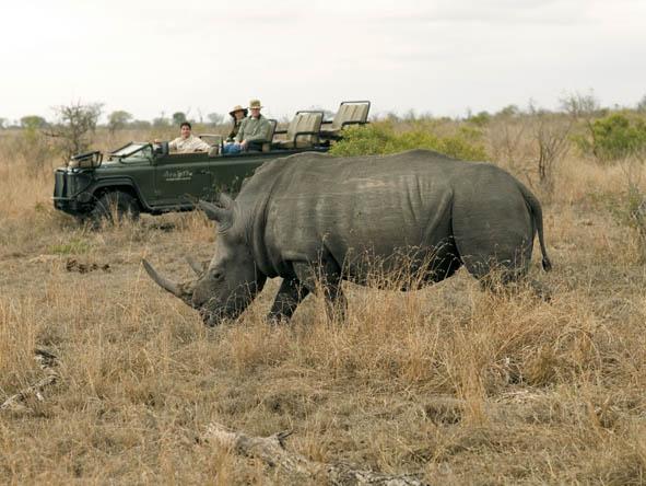 6333 Kruger 11
