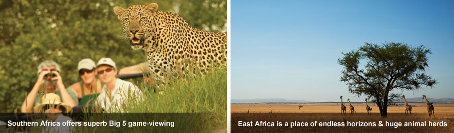 Eastern vs Southern Africa Safaris - Big 5 luxury or classic wide open spaces?