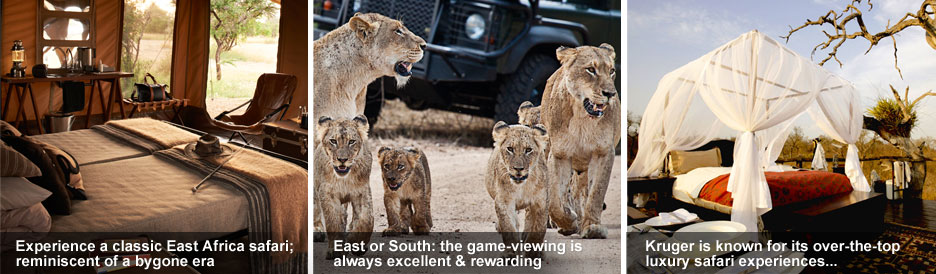 Eastern vs Southern Africa Safaris - from classic to luxury experiences, expect the best