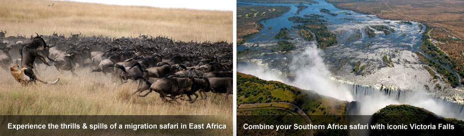 Eastern vs Southern Africa Safaris - thrills & spills and iconic sights
