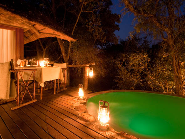 Kruger Honeymoon 3