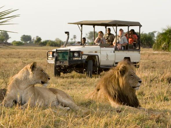 6371 - Okavango Delta Gallery1