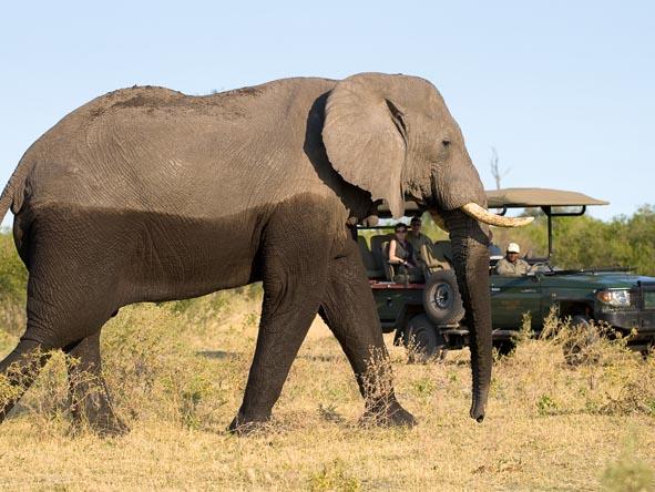 6371 - Okavango Delta Gallery5