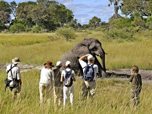 6371 - Okavango Delta Gallery6