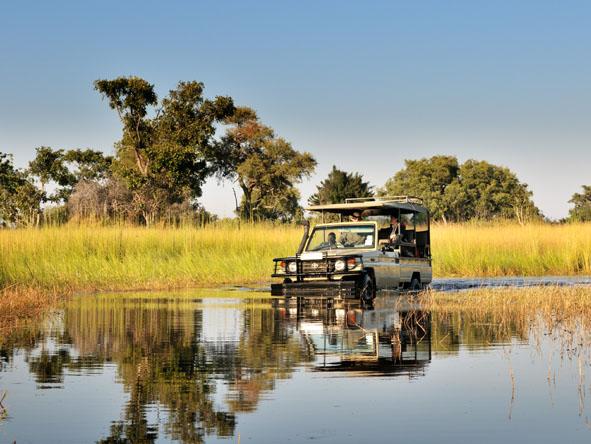 6371 - Okavango Delta Gallery14