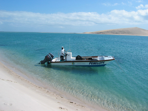 Discover Mozambique