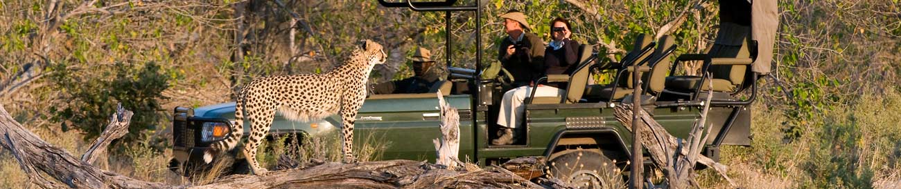 South African Luxury Safari 2