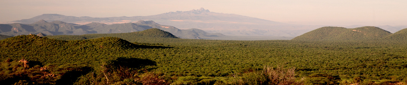 The captivating landscapes of the Samburu National Reserve are home to a variety of unique animals as well as the Big 5, making for exceptional game viewing.