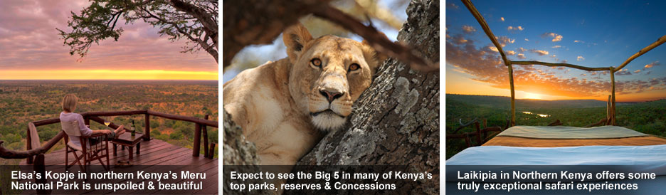 Kenya Safari Guide for Beginners - exceptional safari experiences in all of Kenya&#39;s parks &amp; reserves