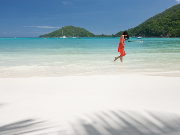 Migration Safari & Magical Seychelles