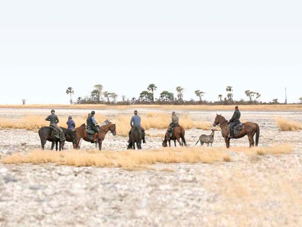 Botswana Family Gallery6