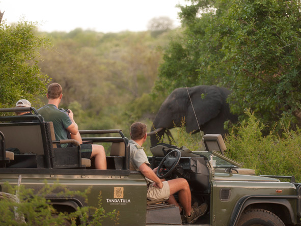 Tanda Tula Safari Club