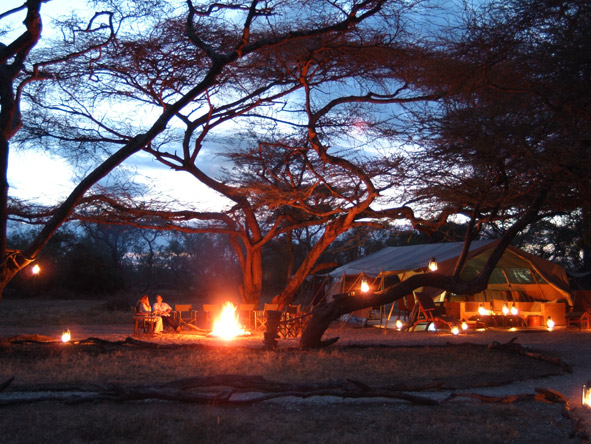 1137-Kenya Wilderness Experience