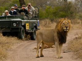 Big 5 Safaris