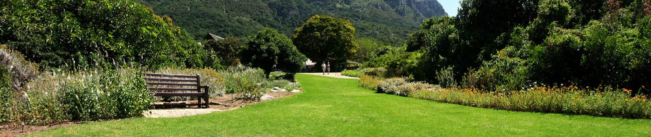 Kirstenbosch Gardens - stroll through the gardens or enjoy a picnic