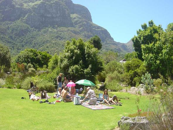 Kirstenbosch Gardens - picnics in the gardens