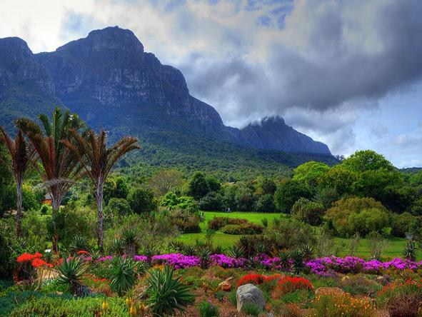 Kirstenbosch Gardens - mountain views