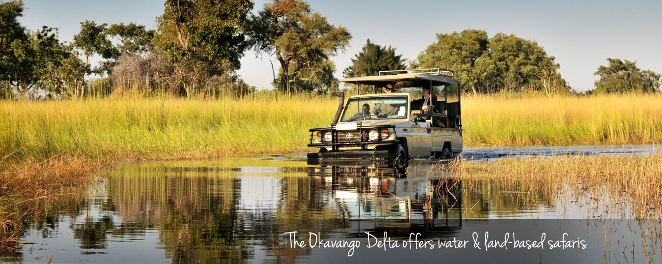 Botswana Seasonal Guide - water & land-based safaris