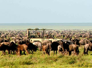 Africa's Famous Places - in the Serengeti during the migration